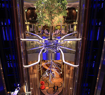 Celebrity Reflection: The Art