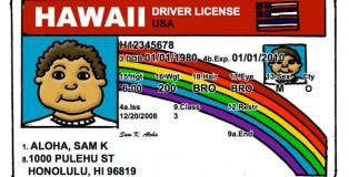 ks-driver-lic