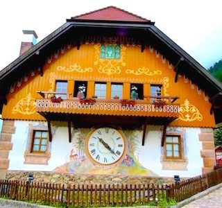 Shore Excursion:  Visiting Germany's famous Black Forest to hear cuckoos,