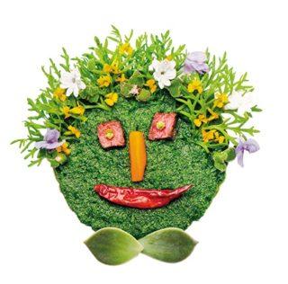 Holland America Line's master chef Rudi Sodamin releases unusual 'Food Faces' art book