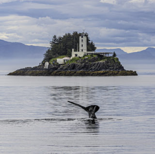 Cruise into Alaska on new Ocean Victory in 2022